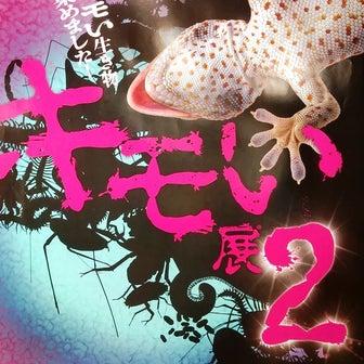 きもい展2 (梅田ロフト4F)虫が苦手な方は要閲覧注意です;;