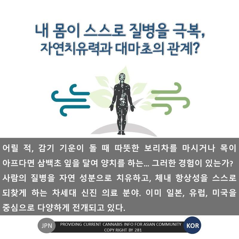 의료 대마초