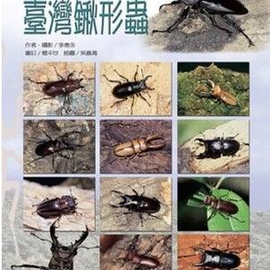 台湾のヒョウタンクワガタたちの画像