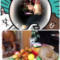 from京*hanatum