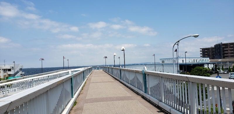 横須賀 海辺 つり 公園