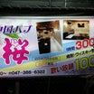 松戸、桜、初訪問❗