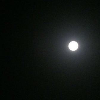 台風一過でやれやれの月夜、海を見て言葉を失う。美しい、、こんな月夜があるなんて。