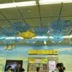平田神社(東京都 渋谷区代々木三丁目八番の十号) - 江戸時代の国学者 平田篤胤を祀る
