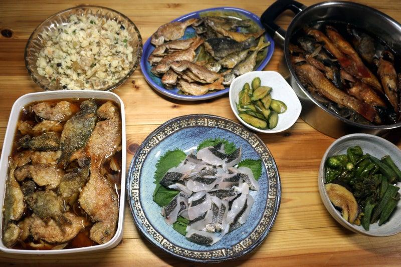 きょう釣ってきたクロ(メジナ)の刺し身、コッパグロとベラの煮つけ、小マダイ・小アジのから揚げほか
