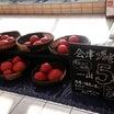 会津プレミアムトマトの販売が開始されました@流山セルトラルパーク