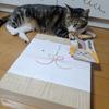 猫も私も嬉しいこといっぱいです(^^♪の画像