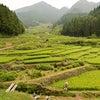 涼みにおいでよ夏の茶臼山高原(愛知県豊田市)の画像