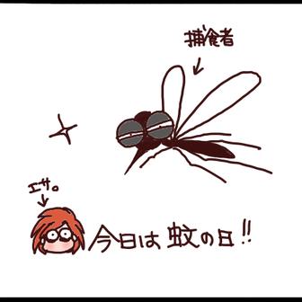 今日は何と!蚊の日!