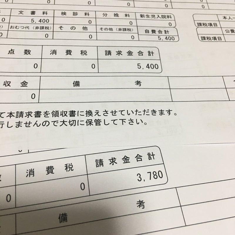 書 消費 税 診断
