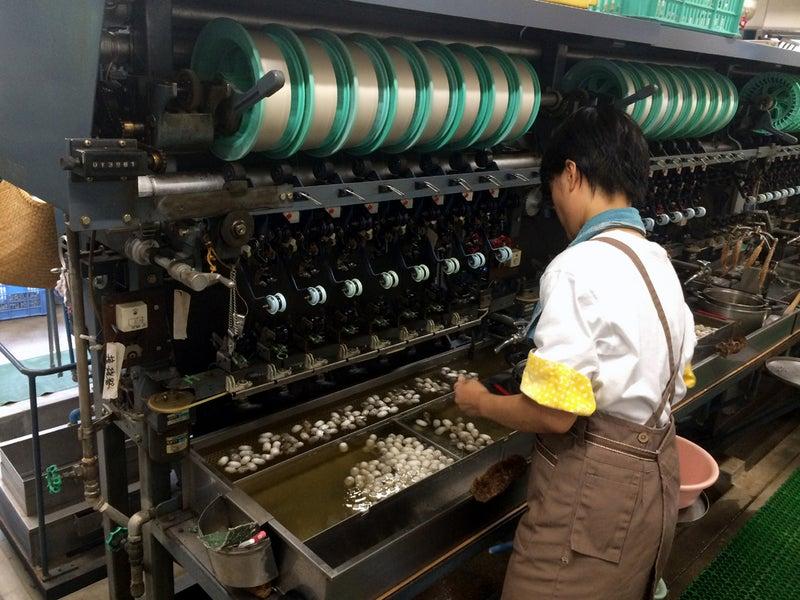 日本に4つしかない製糸工場のひとつ、野村シルク博物館(愛媛県西予市)。