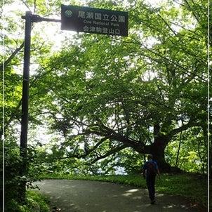 会津駒ケ岳への画像