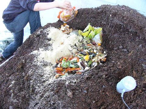 生ゴミ 微生物