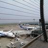 羽田空港に行ってきましたの画像