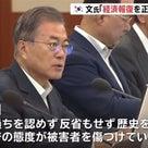 バ韓国の文大統領「日本は過去の過ちを認めず歴史を歪曲し被害者を傷つけている」←日本はどう反論?の記事より