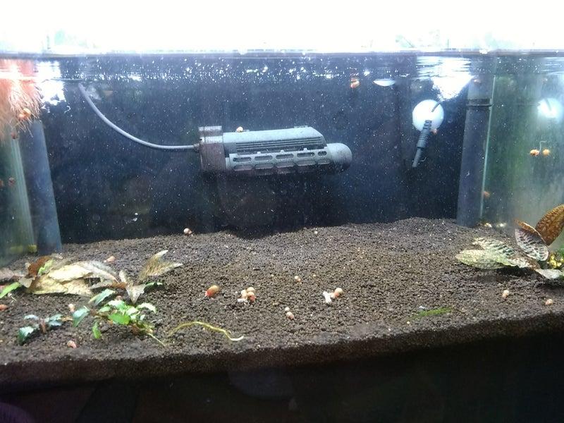 下げる 水槽 ph