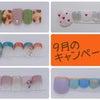9月のキャンペーンネイルデザイン★5000円でこのデザイン!見てみて~の画像