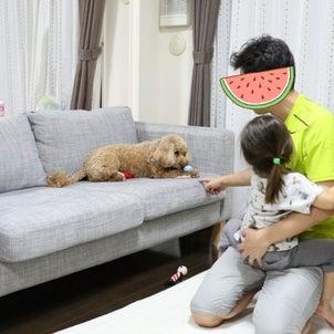 夏休みのワンワンblog☆の画像