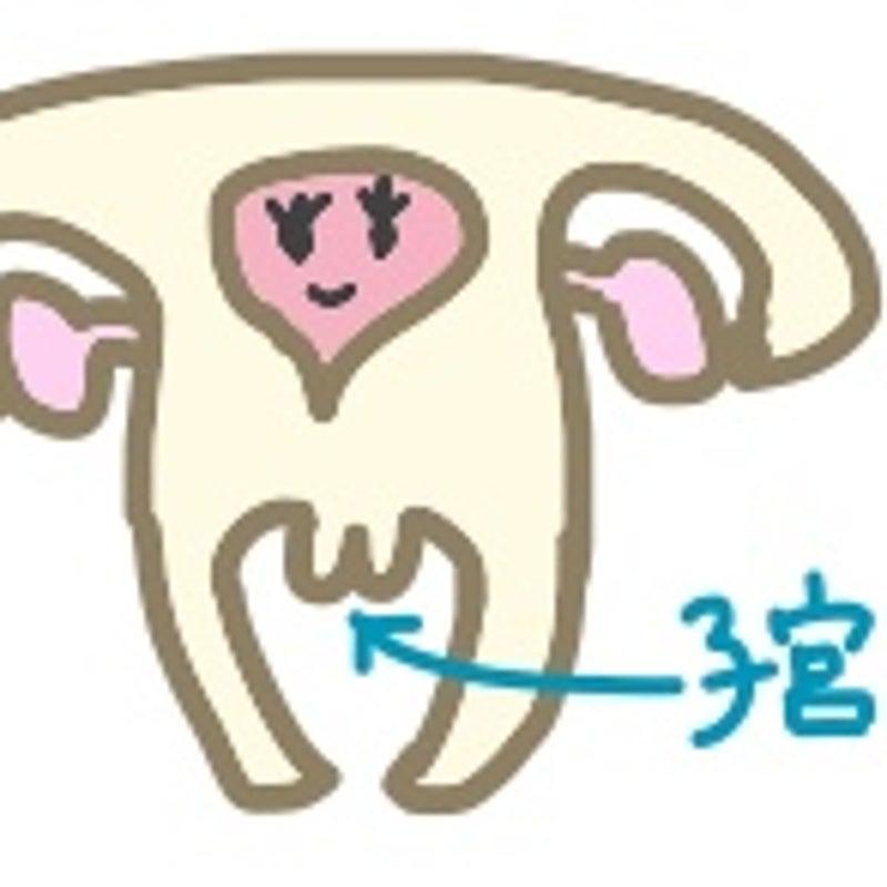 福さん式 ブログ