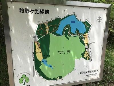 緑地 池 牧野 ヶ 牧野ヶ池緑地(東側)