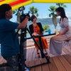 カリコリゾートドッグランのTV撮影の画像