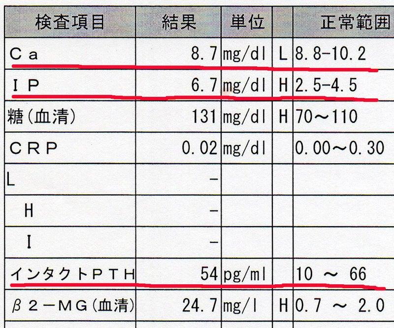 ホルモン 副 甲状腺