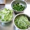 生野菜は水切りで長持ち!の画像