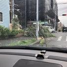台風、大丈夫でしたでしょうか?の記事より