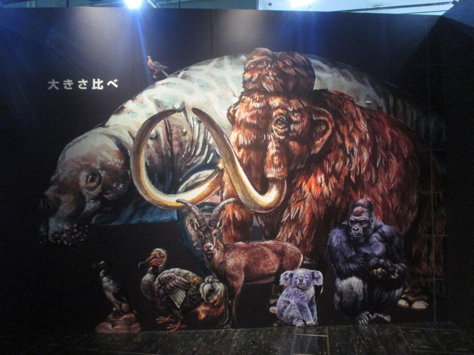 ちょっとその辺行ってくる!名古屋市科学館『絶滅動物研究所』見に行ってきた。
