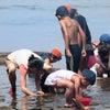 第16回「福島子ども保養プロジェクトin青森2019夏」参加者募集!の画像