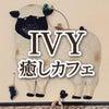 1月21日(火)IVY癒しカフェの画像