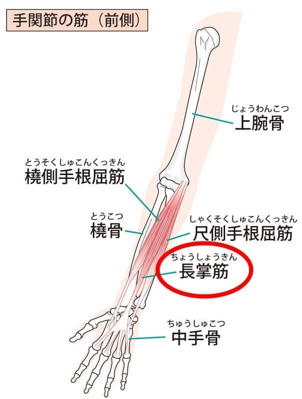 四十肩五十肩で後ろに回すと痛い!セルフケア方法 | 気圧症状、四十肩・五十肩