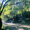 〜つぼみちゃんは川に洗濯にいきました〜の画像