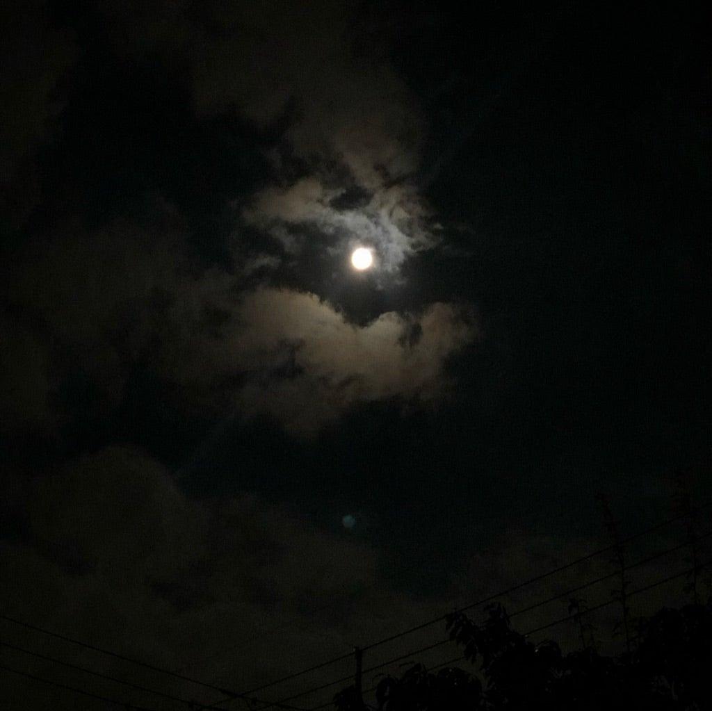 お月様のパワーが届きますように!