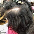 縮毛矯正ファイル96(定期的なグレイカラー)の記事より