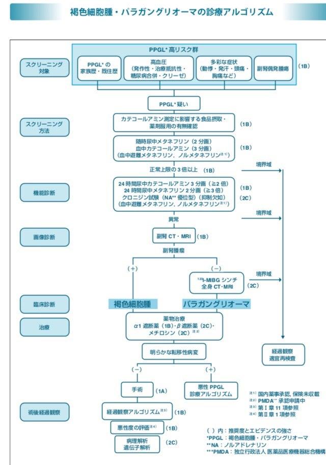 腫 褐色 ガイドライン 細胞 MIBGシンチグラフィー|国立国際医療研究センター病院
