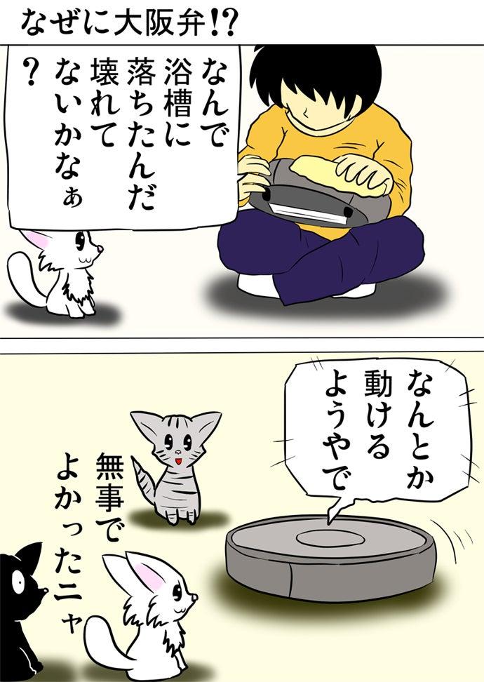 ロボット掃除機をあぐらかいて膝にのせてふきんで拭く少年としゃべるロボット掃除機を眺める白い子猫と黒い子猫とアメリカンショートヘア猫