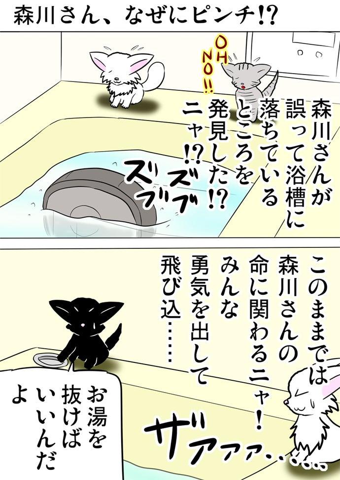 浴室の浴槽の湯船に落ちたロボット掃除機を見下ろすアメリカンショートヘア猫と白い子猫と湯をぬく黒い子猫