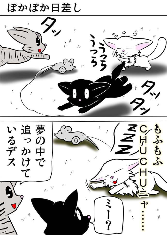 走り回るねずみのおもちゃを追っていたがうつらうつらして白い絨毯の上にうつぶせに倒れて眠る白い子猫を眺める黒い子猫とアメリカンショートヘア猫