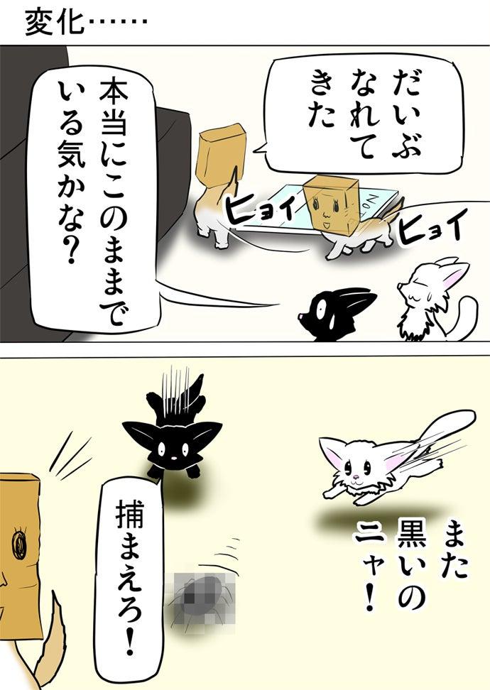 床に落ちたノートや黒いソファーを避けて通って白い子猫と黒い子猫が追いかけるモザイクのかかったゴキブリの方を振り返るマジックで顔の描かれた茶色紙袋を被ったスコティッシュフォールド猫