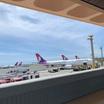 【ハワイから日本へ】ワンオペ子連れ飛行機!