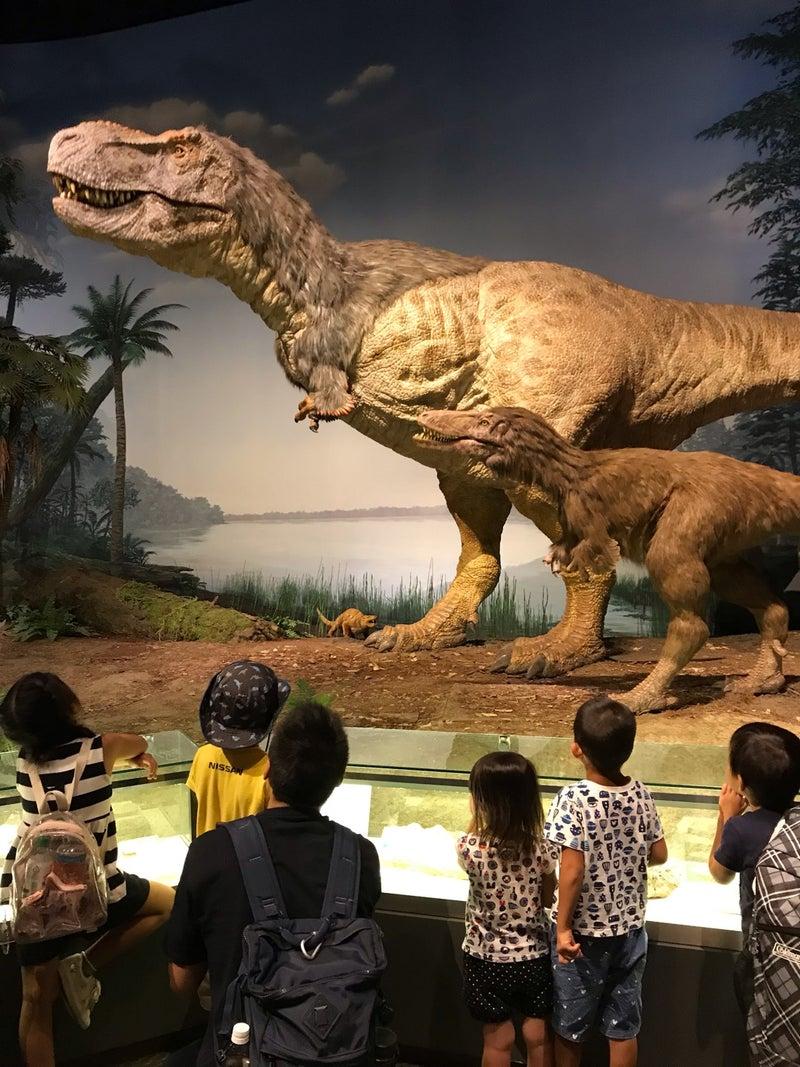 恐竜 茨城 博物館 県
