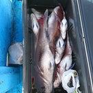完全ふかせ釣り解禁前に試し釣りの記事より