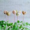 【募集】ケーキポップス1dayレッスンのご案内ですパーツ作りからチャレンジ!の画像