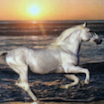 馬に乗ったら