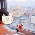 北海道在住♡2歳児男の子ママの子育てDiary♡