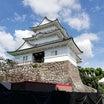 小田原城公園を散策