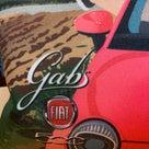 【てん】GABS(ガブス)バッグを見てみませんか。の記事より