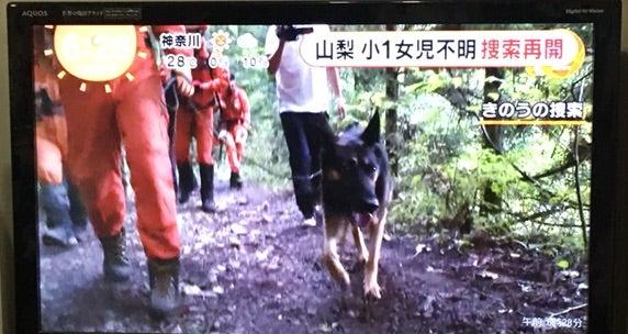 🤣道 志村 キャンプ 女の子