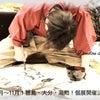 【 10月 徳島、大分、11月 高知 イオンモール個展 決定! 】の画像